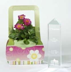 Plant Porter Awarded For Innovation