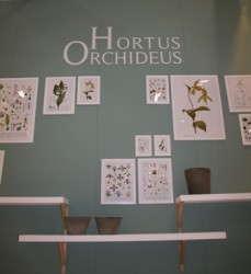 Slideshow: Dutch Merchandising Concepts