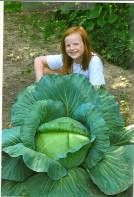 Bonnie's Cabbage Contest Grows Gardeners