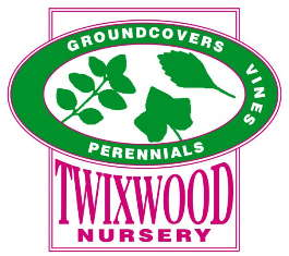 Twixwood Nursery LLC