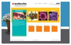 Fun New Look & Tools To Selecta's Website