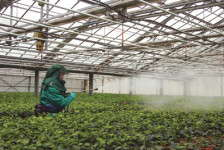 A Step Forward For Pesticide Safety Training