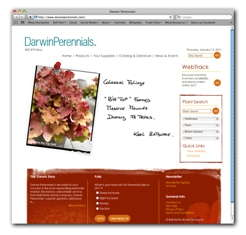 Darwin Perennials Launches New Website