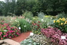 Michigan Garden Plant Tour
