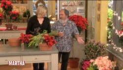 Traven On 'The Martha Stewart Show'