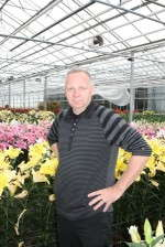 Potted Lily Potential In The U.S.