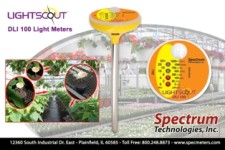 An Affordable Light Intensity Meter
