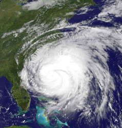 Growers: Hurricane Could Have Been Worse