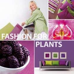 Fashion For Plants