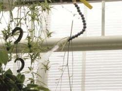 Hanging basket setup