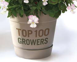Top 100 Growers 2012