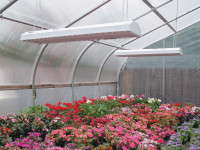 LED lighting from Growers Supply