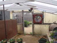 An open door within a few feet of your fan hinders its ability to cool the greenhouse.
