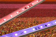 Agricultural Lightbars