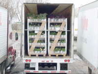 The GreenWay Plant Shipper allows growers to ship less than one truckload of product.