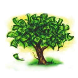 money tree, money doesnt grow on trees