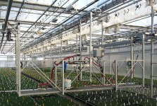 This navigator boom from Cherry Creek Systems helps water crops consistently and evenly.