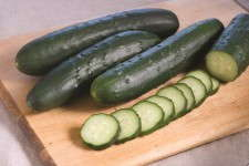 'Corinto' cucumber is a parthenocarpic cucumber that doesn't require pollination.