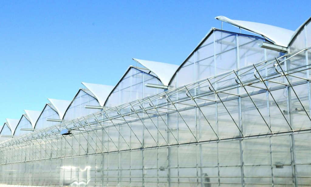 Ggs Open Roof Greenhouse Design Helps Hendriks