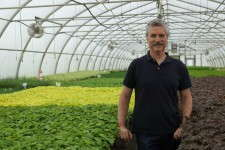 Steve Castorani of North Creek Nurseries