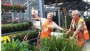Bell Nursery's Facebook page celebrates the joy of plants and shopping at The Home Depot.