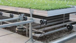 The DELTA FIN TF system provides energy savings by creating an envelope of warmth around the crops rather than heating the air.