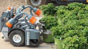 Harvest Automation's pot-moving robots