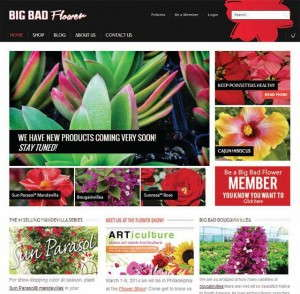 BigBadFlower.com sells a selection of unique plants and products.