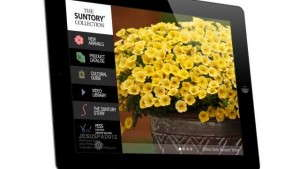 Suntory Flowers' Growers Guide