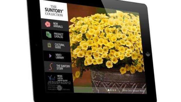 Suntory Flowers' Growers Guide