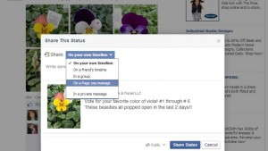To share a post on Facebook, click on Share. In the dropdown menu, choose On A Page You Manage, and then choose the Page you'd like to post it to.