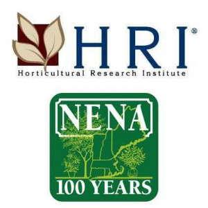 HRI-and-Nena