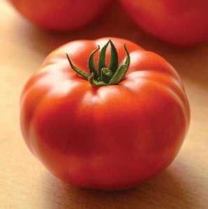 Tomato-Genuwine-PanAmericanSeed