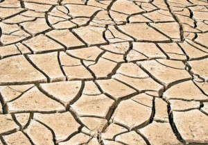 drought_cracked earth