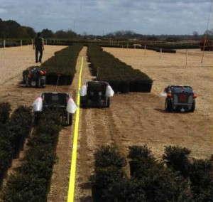 harvest automation robots