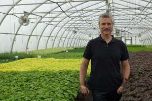 Steve Castorani, owner of North Creek Nurseries