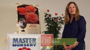Weeks Roses Collaborates On Marketing Effort For 'Anna's Promise' Rose [sponsor content]