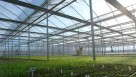 NorthCreekGreenhouse_midmarch15