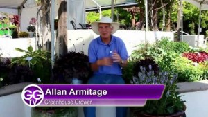 mazon-video-GGTV-350Varieties04142014AllanOnPWPerennials