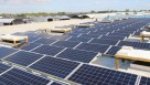 Costa Farms' new solar panels will offset 493,487 pounds of carbon dioxide annually