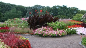 Minnesota Landscape Arboretum – University of Minnesota