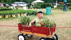 Gardeners of all ages enjoyed the annual plant sale at McCorkle Nurseries