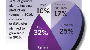 How will growers' production in 2016 compare to 2015