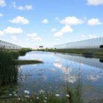Water Retention Pond