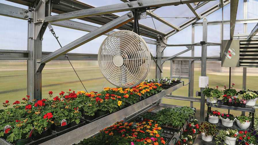 How to Create the Ideal Ventilation System for Your Greenhouse - Greenhouse  Grower