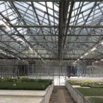 Dimmable LED fixtures at Peace Tree Farms