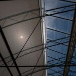 Plastic Coverings in Cannabis Greenhouses